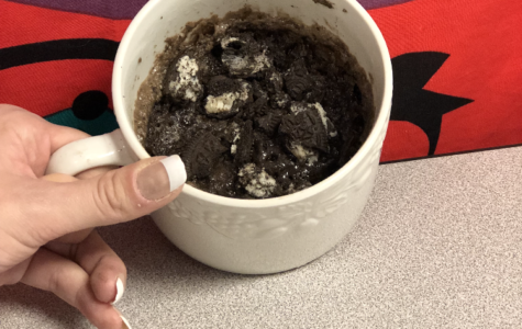 Review on Mug Cakes
