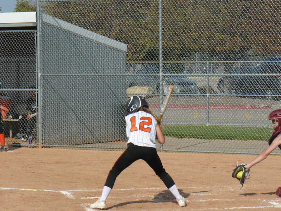 A Tigers batter holds back her swing to avoid the bad pitch.