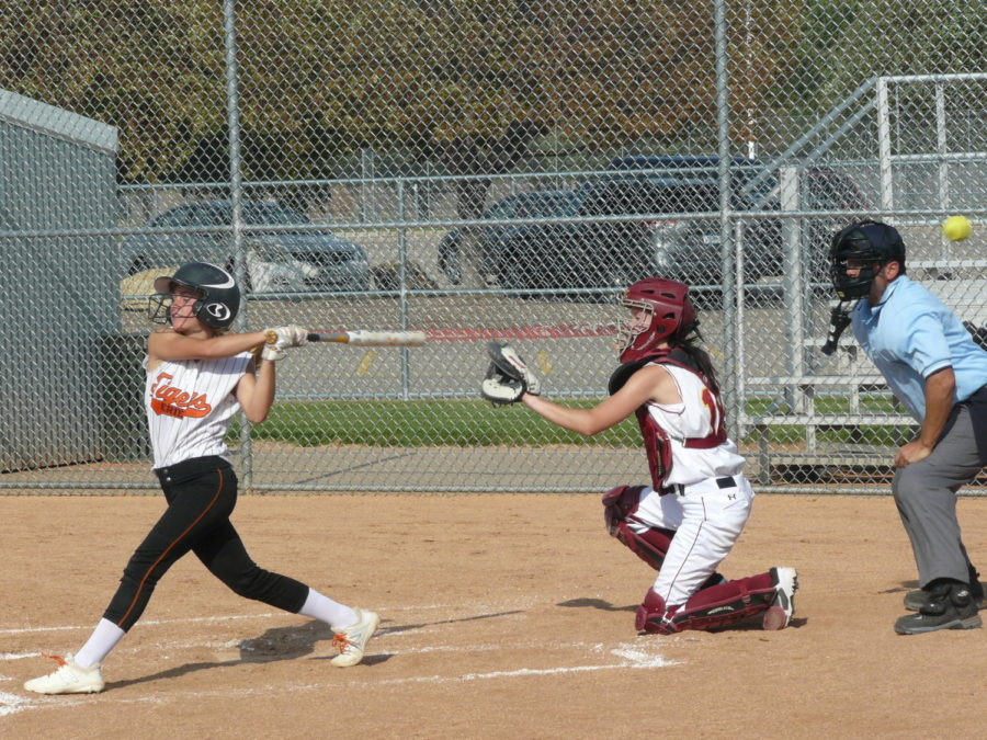 A Tigers batter hits the ball for a foul.