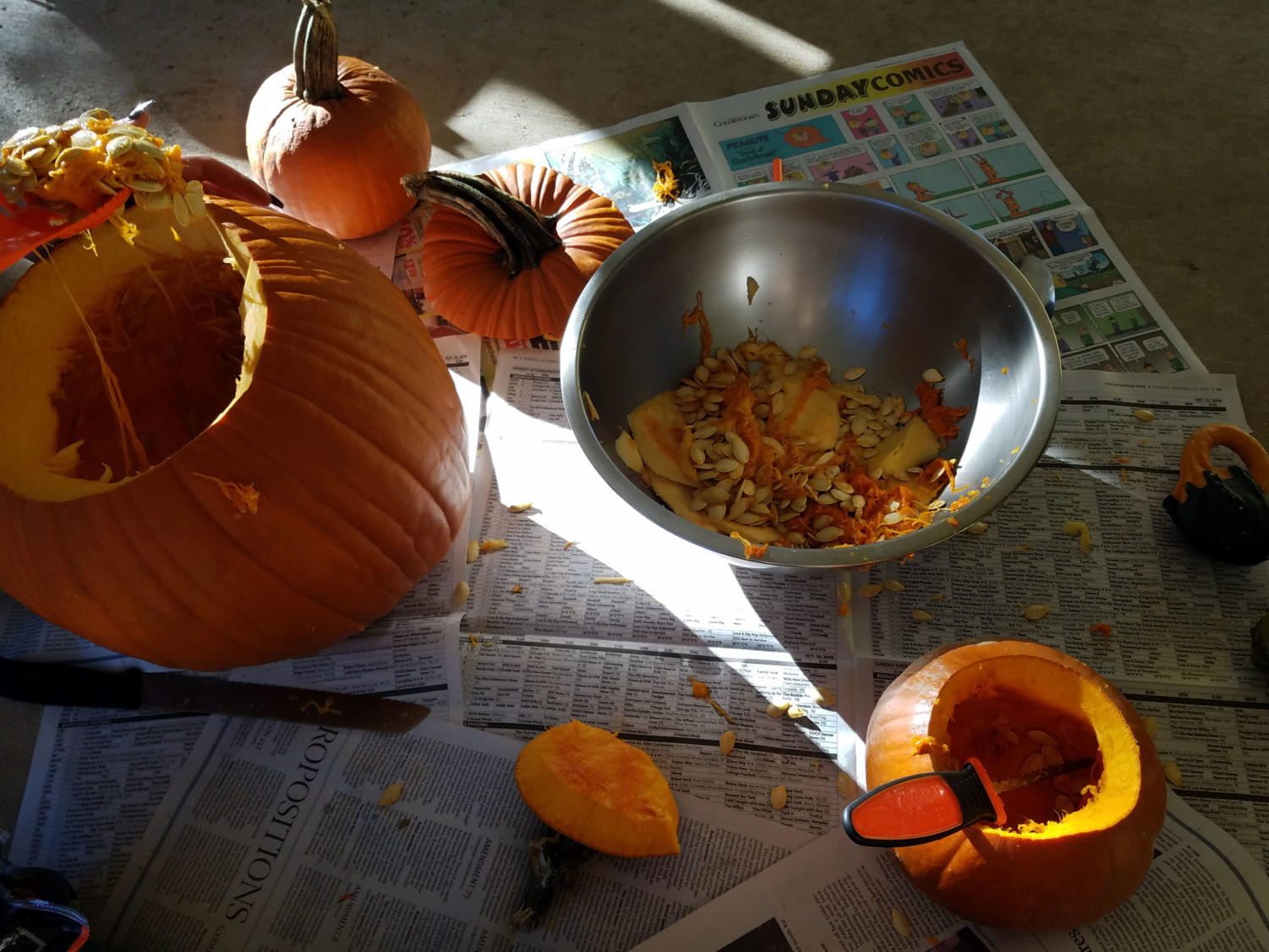 These past few sunny days have been perfect pumpkin carving weather - get out there before it's too cold again.