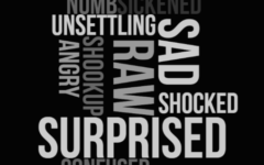 This is a Wordle created using the most common words students and teachers used to describe the shutdown Wednesday. NOTE: Some parts of the following quotes may be upsetting.