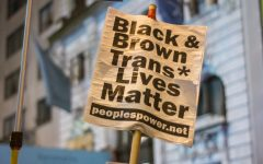 Protests across the country are calling for the end to police brutality, particularly against African Americans and other Americans of color.