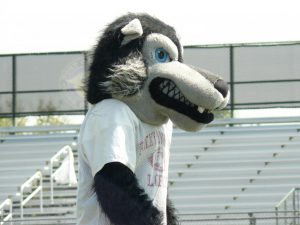 Loco the Lobo leads spirit cheers at the assembly.